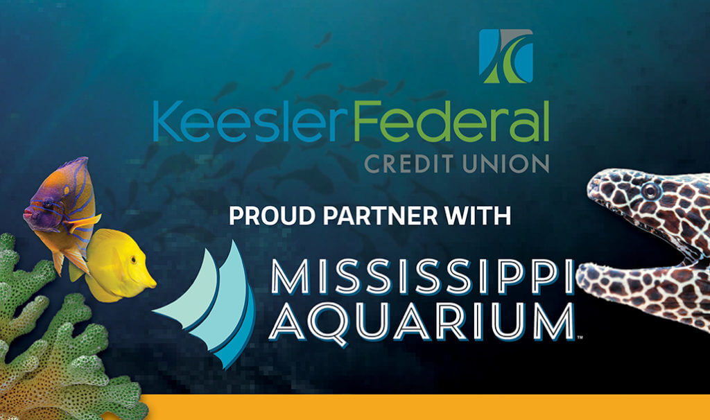 keesler federal proud partners with mississippi aquarium